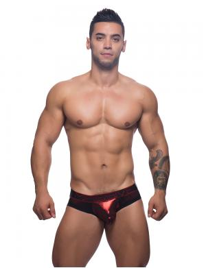 Andrew Christian MASSIVE Hotness Brief Metallic Rot