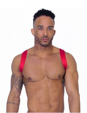 LEADER X Back Harness red