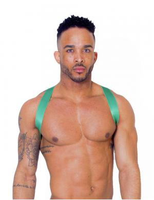 LEADER X Back Harness green