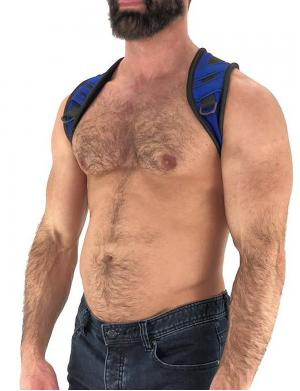 Nasty Pig Access Harness blue